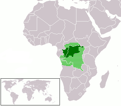 location-du-lingala